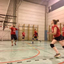 Ligue mixte de volley